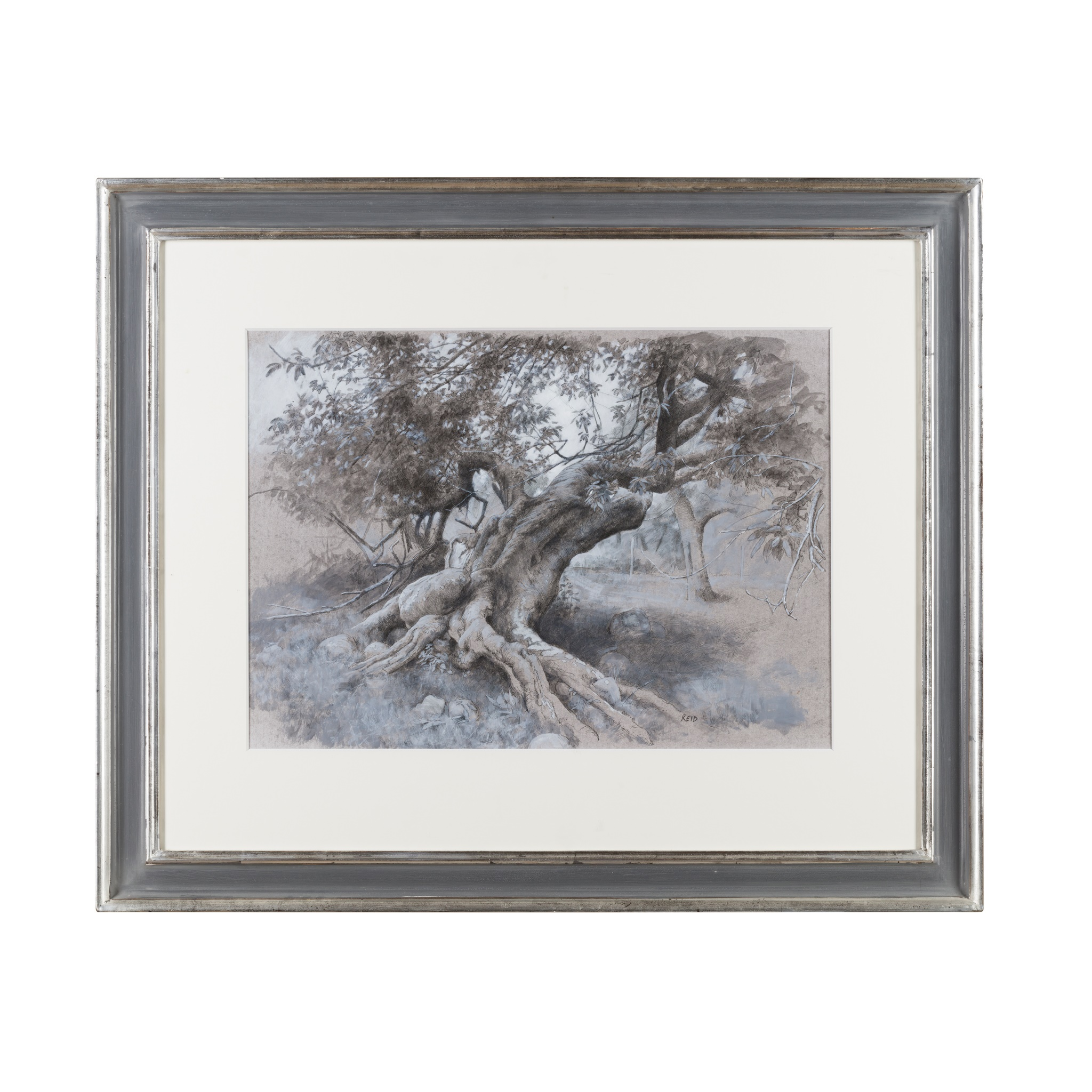 § PAUL REID (SCOTTISH B.1975) TREES - LOCH NESS - Image 2 of 3