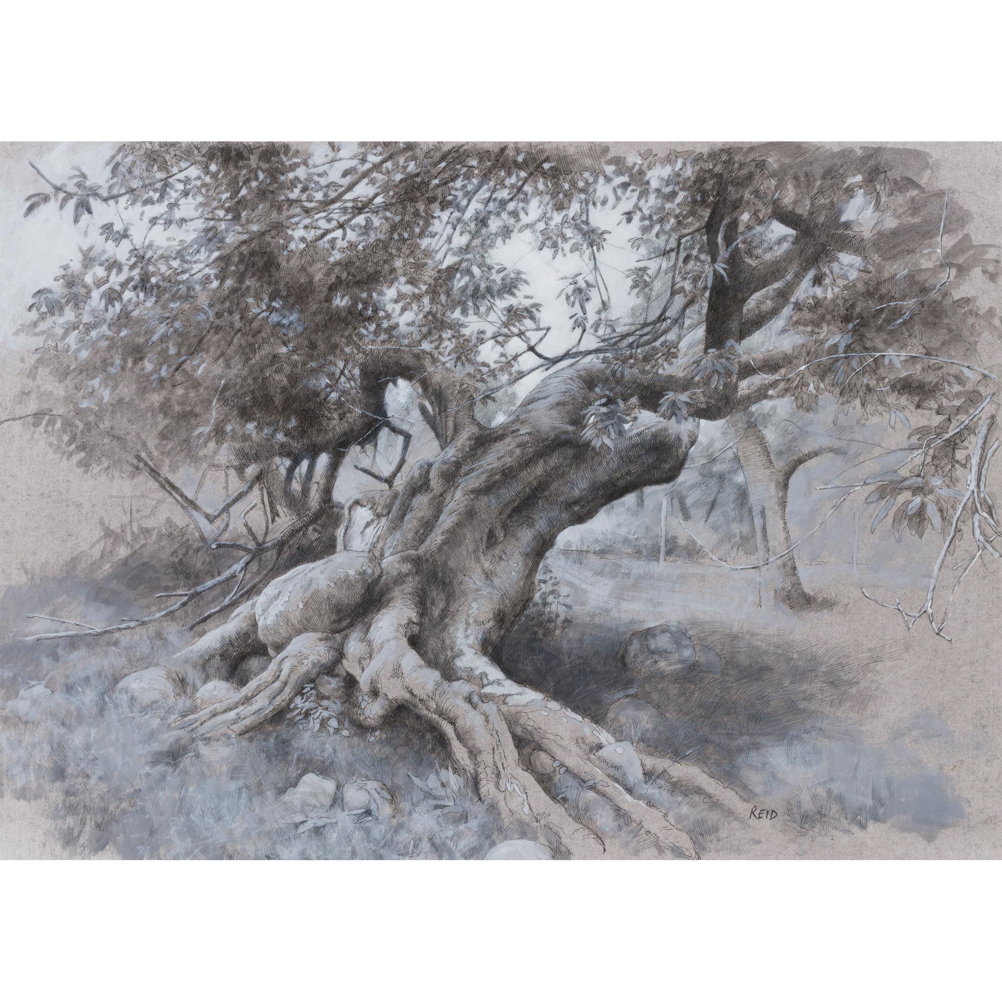 § PAUL REID (SCOTTISH B.1975) TREES - LOCH NESS