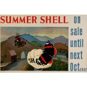 Cedric Morris (1889-1982) Summer Shell