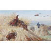 ARCHIBALD THORBURN (SCOTTISH 1860-1935) RED GROUSE AND BLACKCOCK AMONGST THE STOOKS