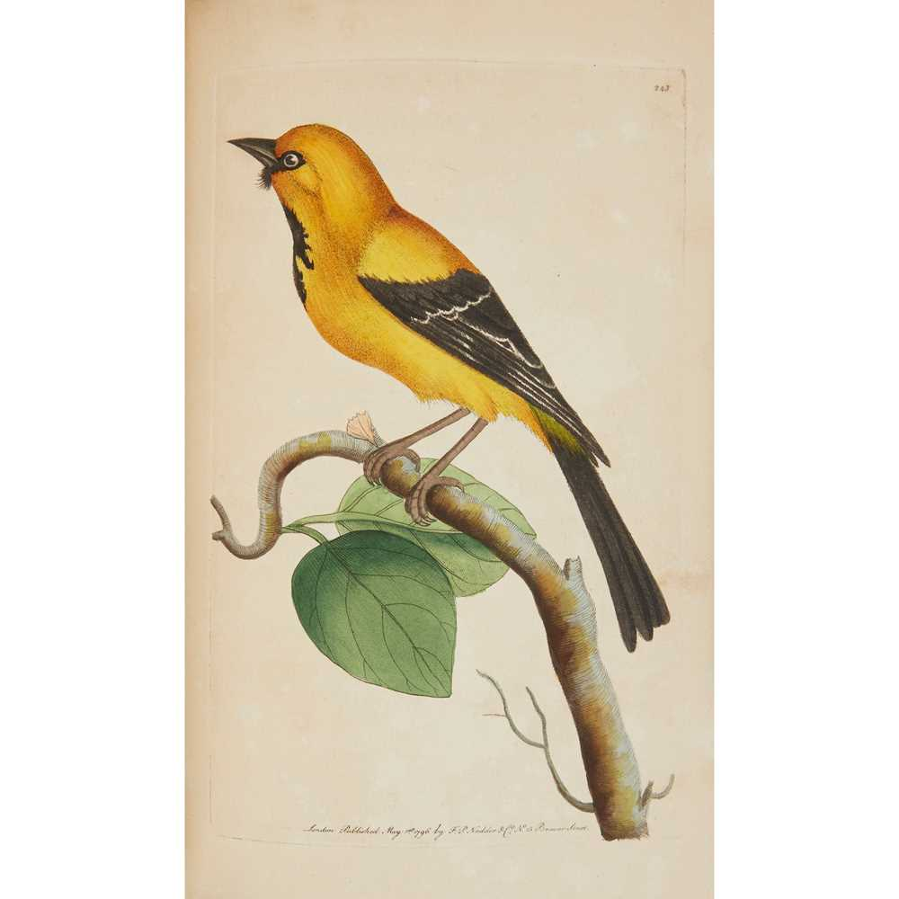 Shaw, George and Frederick P. Nodder The Naturalist's Miscellany The Naturalist's Miscellany: or - Image 3 of 3