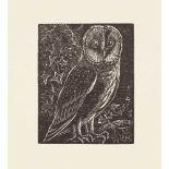 Wood-engraving - Tournour, Sister Margaret A Collection, comprising Bible Birds Durham: Blue