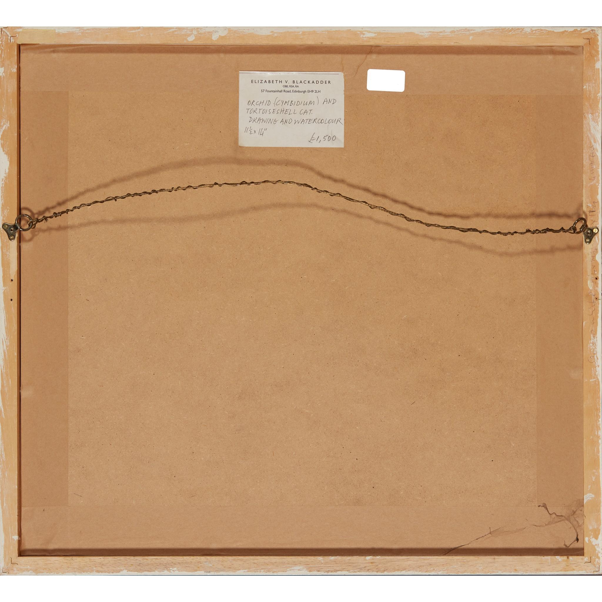 § DAME ELIZABETH BLACKADDER O.B.E., R.A., R.S.A., R.S.W., R.G.I., D.Litt (SCOTTISH 1931-) ORCHID - Image 3 of 3
