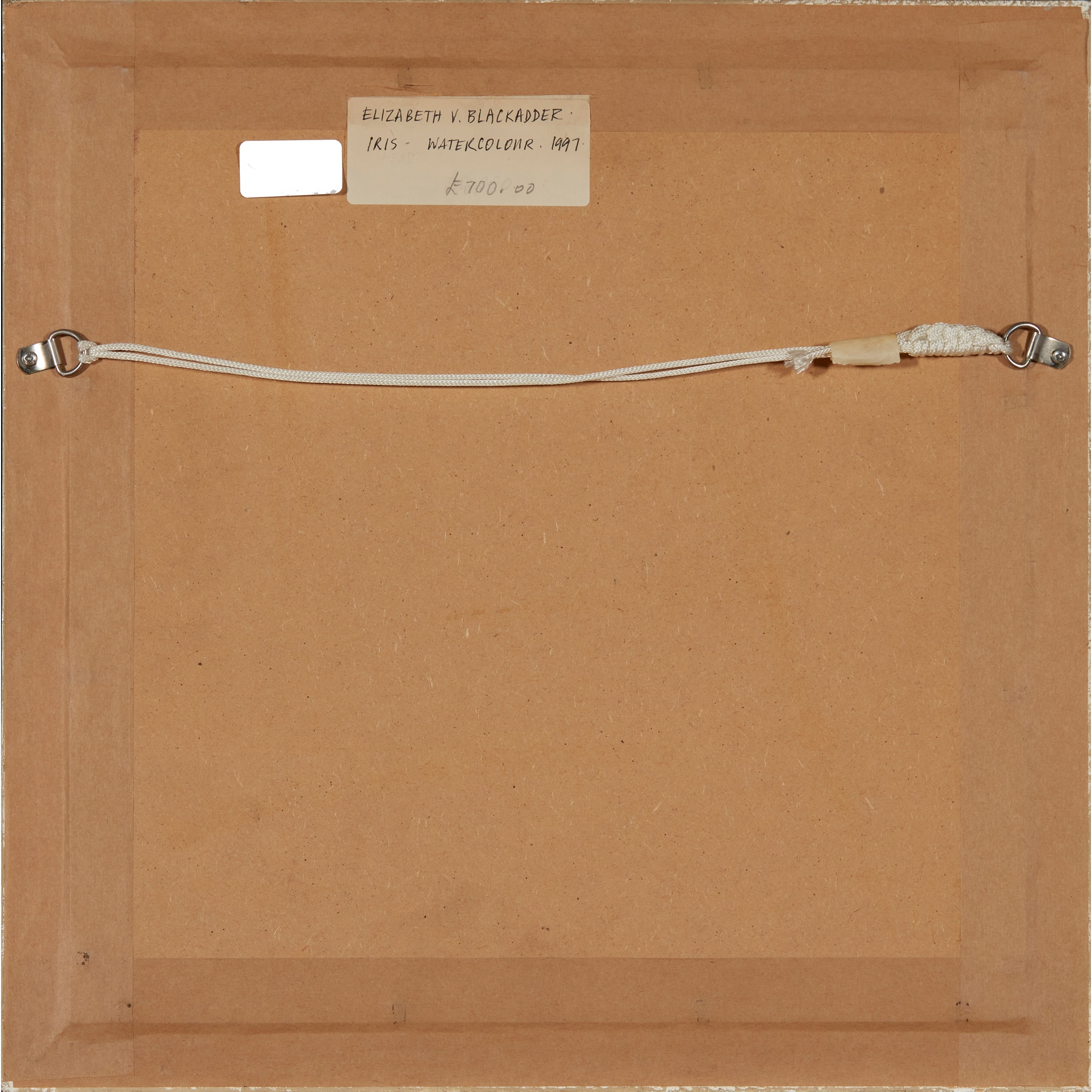 § DAME ELIZABETH BLACKADDER O.B.E., R.A., R.S.A., R.S.W., R.G.I., D.Litt (SCOTTISH 1931-) IRIS, - Image 3 of 3