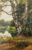CHARLES EDWARD WILSON (1854-1941) a river landscape with a birch tree, watercolour, 48cm x 31cm,