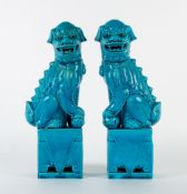 A PAIR OF MODERN CHINESE PORCELAIN TURQUOISE GLAZED DOGS OF FO standing on plinth bases, each 31cm