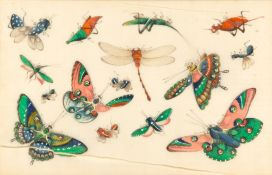 AN ANTIQUE CHINESE PAINTING ON RICE PAPER depicting insects, 18.5cm x 28.5cm, framed and glazed,