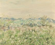 MID TO LATE 20TH CENTURY FIELD LANDSCAPE with flowers, oil on canvas, initialled EBS, 49cm x 60cm,