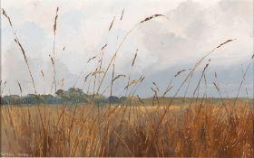 PAMELA DERRY (1932) Through the Grass, oil on board, 20.5cm x 33cm, framed, overall 38cm x 50.5cm