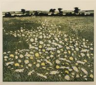 Phil Greenwood (b.1943) 'Moonpennies' etching and aquatint, artists proof, signed and dated 1975