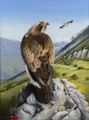 Trevor Boyer (b.1948) 'Booted eagle' watercolour, signed and dated 1980 lower right, 42 x 31cm