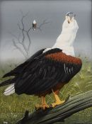 Trevor Boyer (b.1948) 'African Fish Eagle'' watercolour, signed and dated 1981 lower right, 42 x