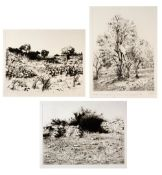 Walid Abu Shakra (b.1946) 'View from Eian-Sarrar No 1' etching, numbered 11/65, signed and dated