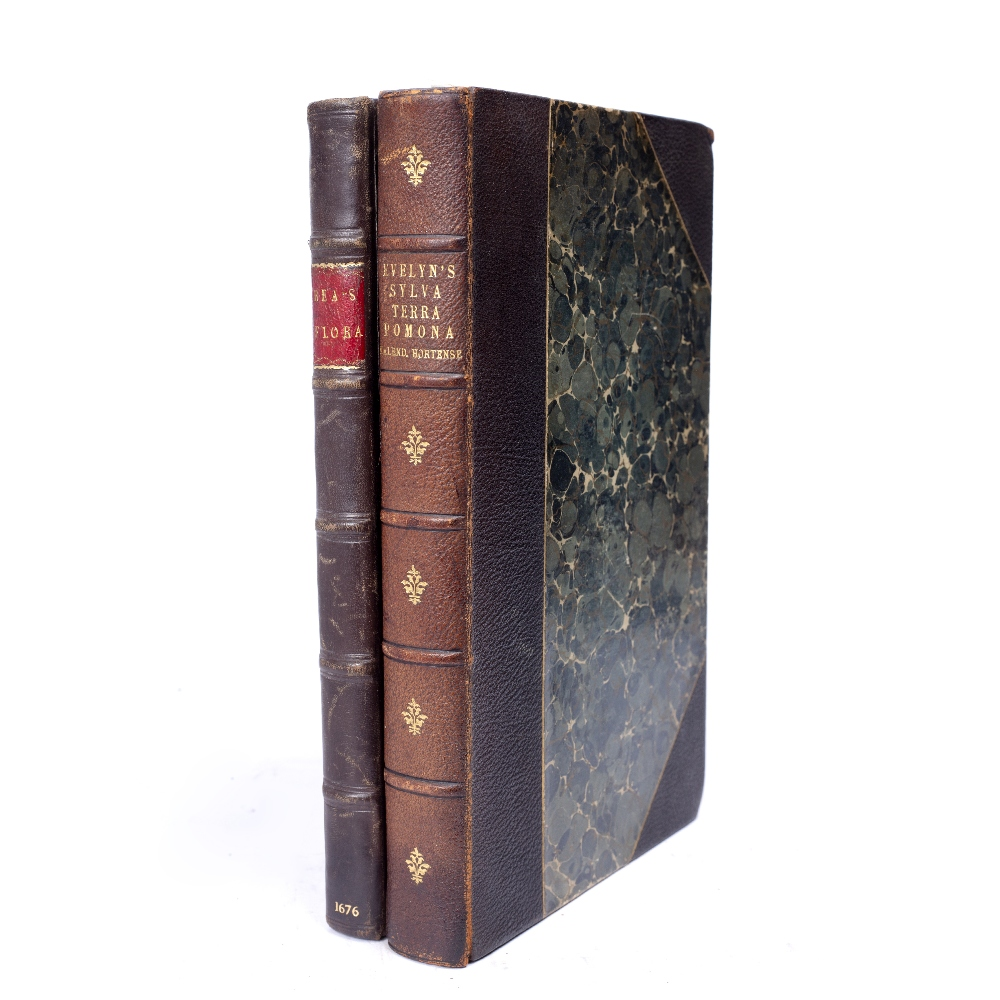 EVELYN, John, Sylva, or a Discourse of Forest Trees and the Propagation of Timber in His Majesties