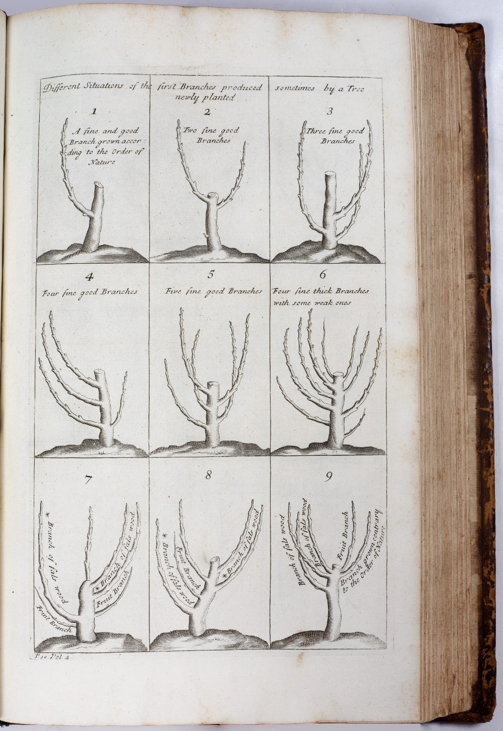LA QUINTINYE, Jean de, 'The Compleat Gard'ner; or Directions for Cultivating and Right Ordering of - Image 5 of 10