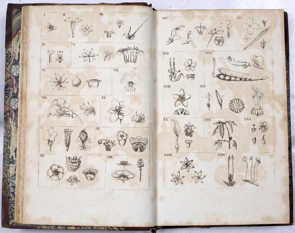 DARWIN, Erasmus (1731-1802), Philosopher and Physician 'The Botanic Garden' A Poem in Two Parts. - Image 7 of 7