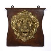 A BRONZE LION MASK mounted on an oak wall plaque, 19th Century, 25cm high