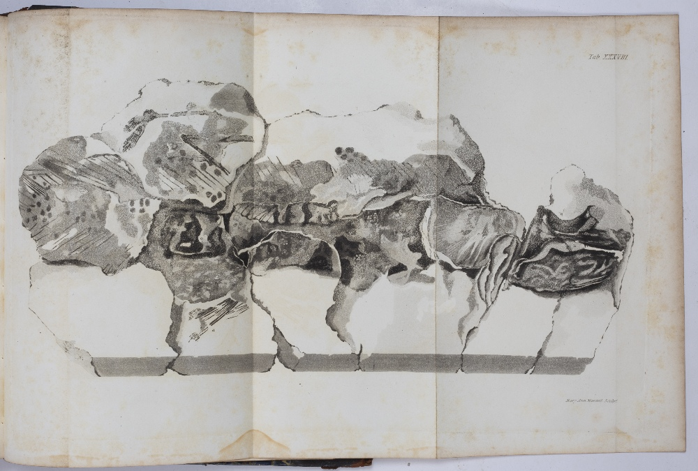 MANTELL, Gideon, 'The Fossils of the South Downs or Illustrations of the Geology of Sussex'. - Image 4 of 5