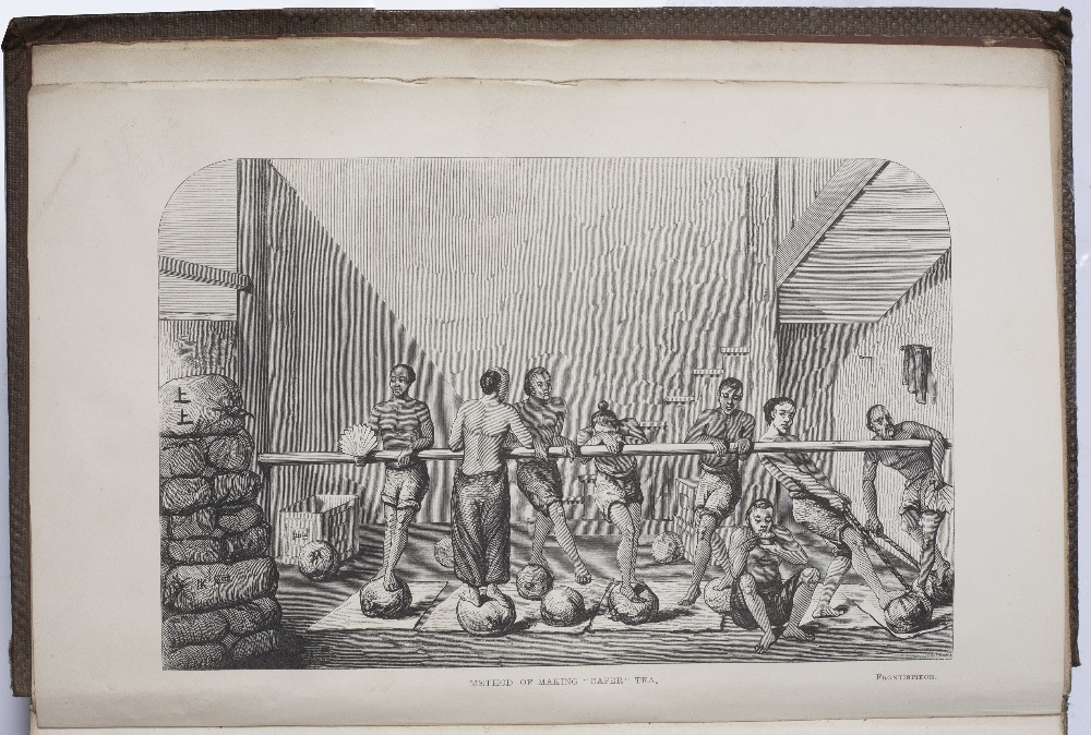 FORTUNE, Robert, 'A Residence Among The Chinese' with illustrations. Murray, London 1857. - Image 5 of 5