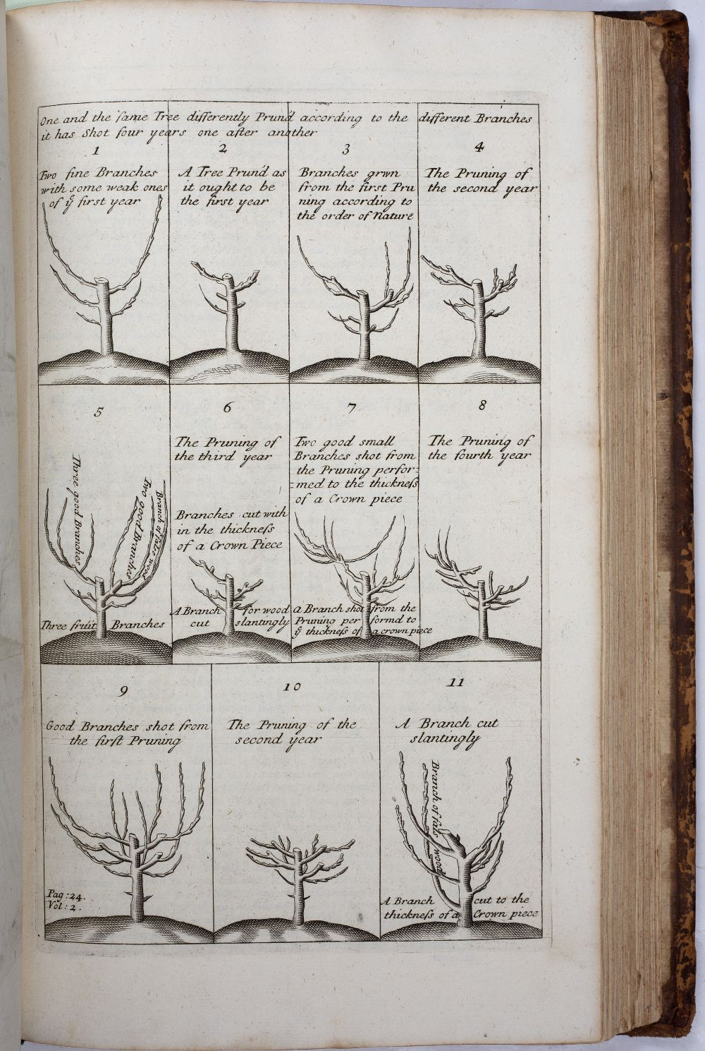 LA QUINTINYE, Jean de, 'The Compleat Gard'ner; or Directions for Cultivating and Right Ordering of - Image 9 of 10