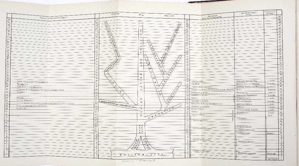 ROMANES, George John, 'Mental Evolution in Man, Origin of Human Faculty'. Kegan, Paul, Trench, - Image 3 of 3