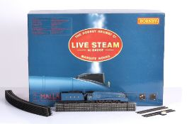 A Hornby 00 gauge live steam locomotive Mallard complete with most original packaging but lacking