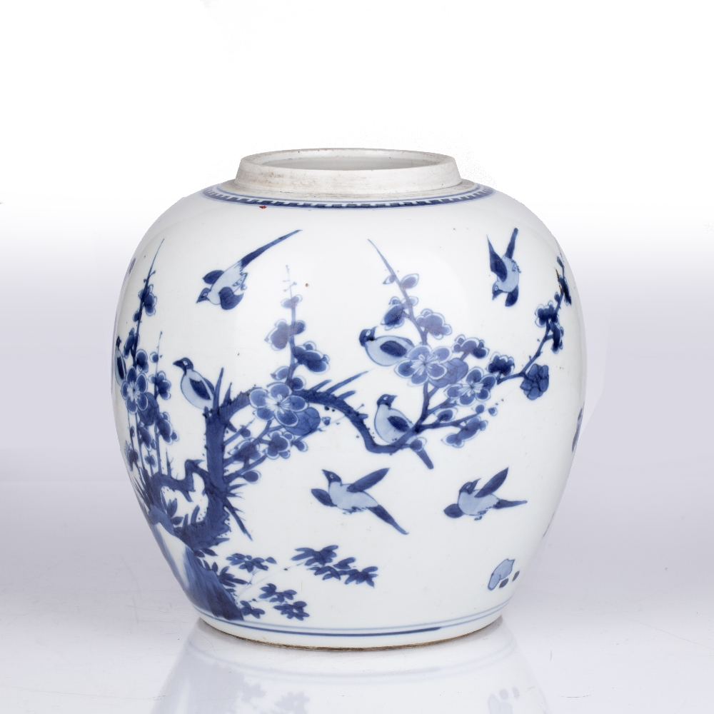 Blue and white jar Chinese, Kangxi period decorated to the exterior with birds perched on line - Image 2 of 4