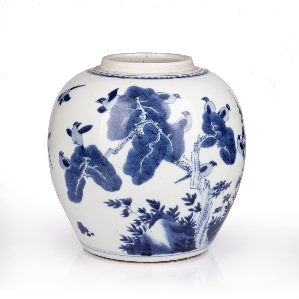 Blue and white jar Chinese, Kangxi period decorated to the exterior with birds perched on line