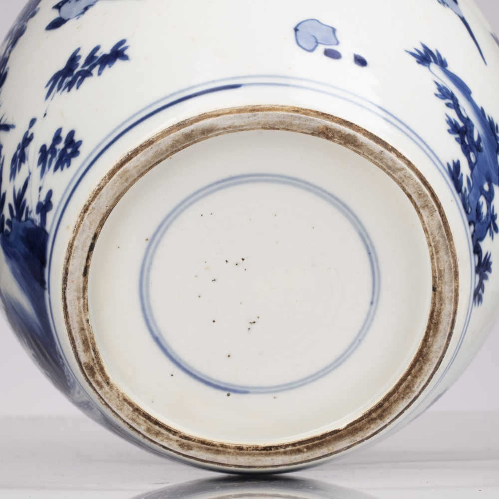 Blue and white jar Chinese, Kangxi period decorated to the exterior with birds perched on line - Image 3 of 4