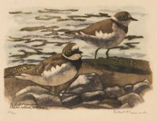 Robert Hainard (1906-1999) Two little ringed plovers, coloured woodcut, print, signed in pencil