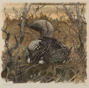 Robert Hainard (1906-1999) Common loon, coloured woodcut, print, 'Kamasjarvi.Laponie, 22nd Juin