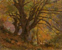 Jean Eugene Julien Masse (French b.1856-d.1950), trees in a forest, oil on board, signed lower left,
