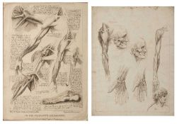 Francesco Bartolozzi R.A. (1725-1815) after Leonardo da Vinci Anatomical studies, two in one