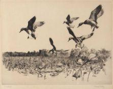 Richard Evett Bishop (American) (1887-1975) 'Greenheads' (Mallards), etching, 1939, signed and
