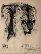 20th century Continental School A ferocious lion, etching, indistinctly signed and numbered 53/150
