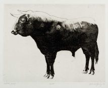 Robert Young (20th Century) Bull, 1967signed, titled, and dated in pencil etching40 x 58cm, together