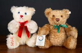A Steiff Hollywood 'Teddy Bear 35' Chooky bear numbered 192/2000, approximately 36cm high with