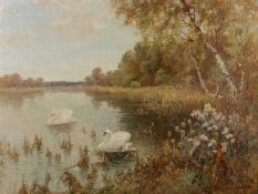 James Townshend (19th/20th Century English School) 'Untitled river with swans' oil on panel,