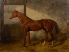 Attributed to Charles Hancock (1802-1877) 'Untitled study of a racehorse' oil on canvas, unsigned,