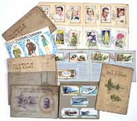 A collection of fourteen cigarette card albums (14)