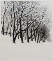 Paul Bisson (b.1938) 'Winter', 'Spring', 'Summer' and 'Autumn', etchings in colour, a set of four,