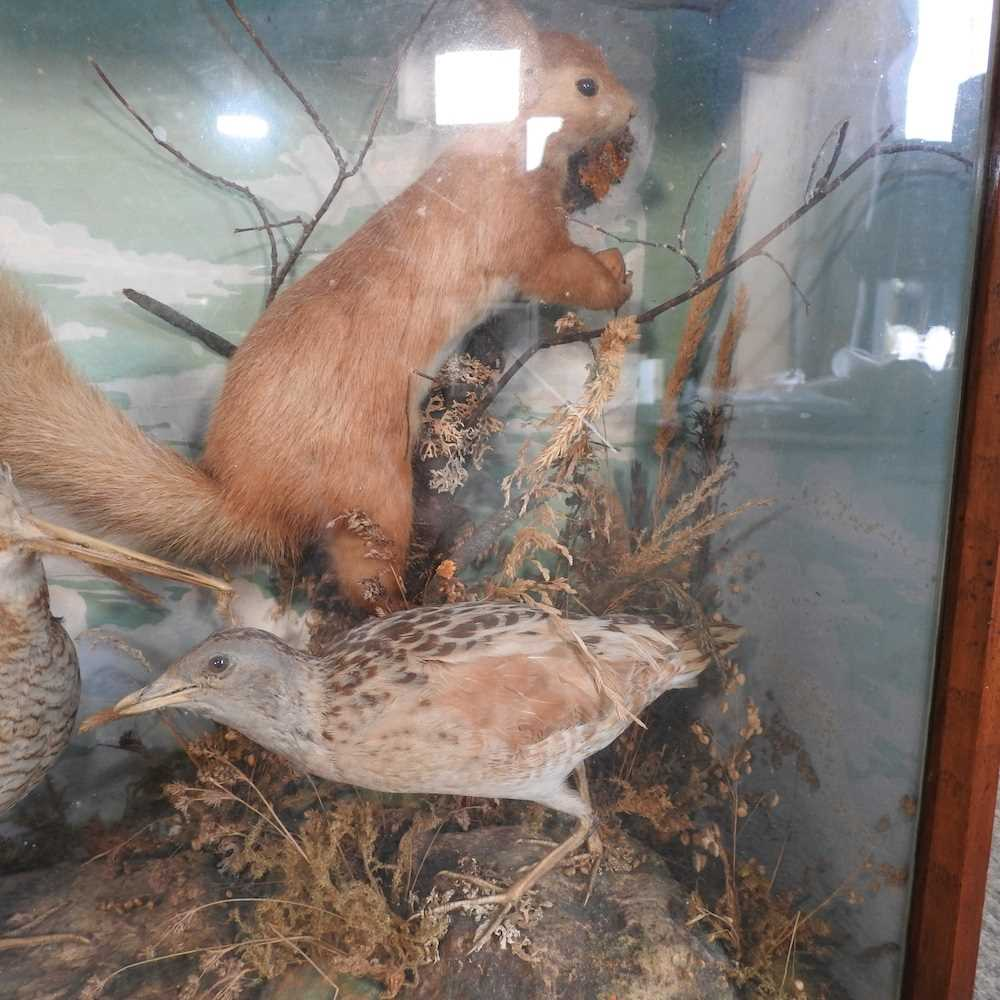 A Victorian taxidermy group of birds - Image 5 of 11