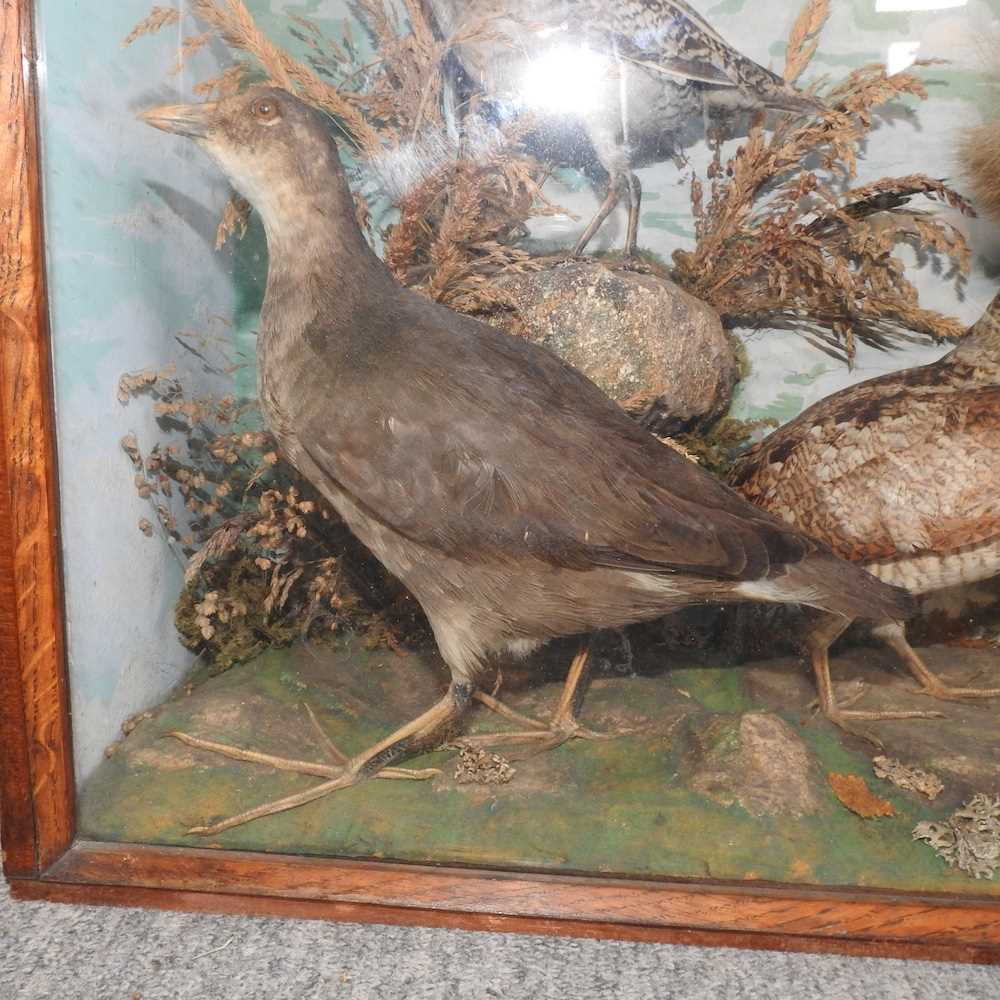 A Victorian taxidermy group of birds - Image 4 of 11