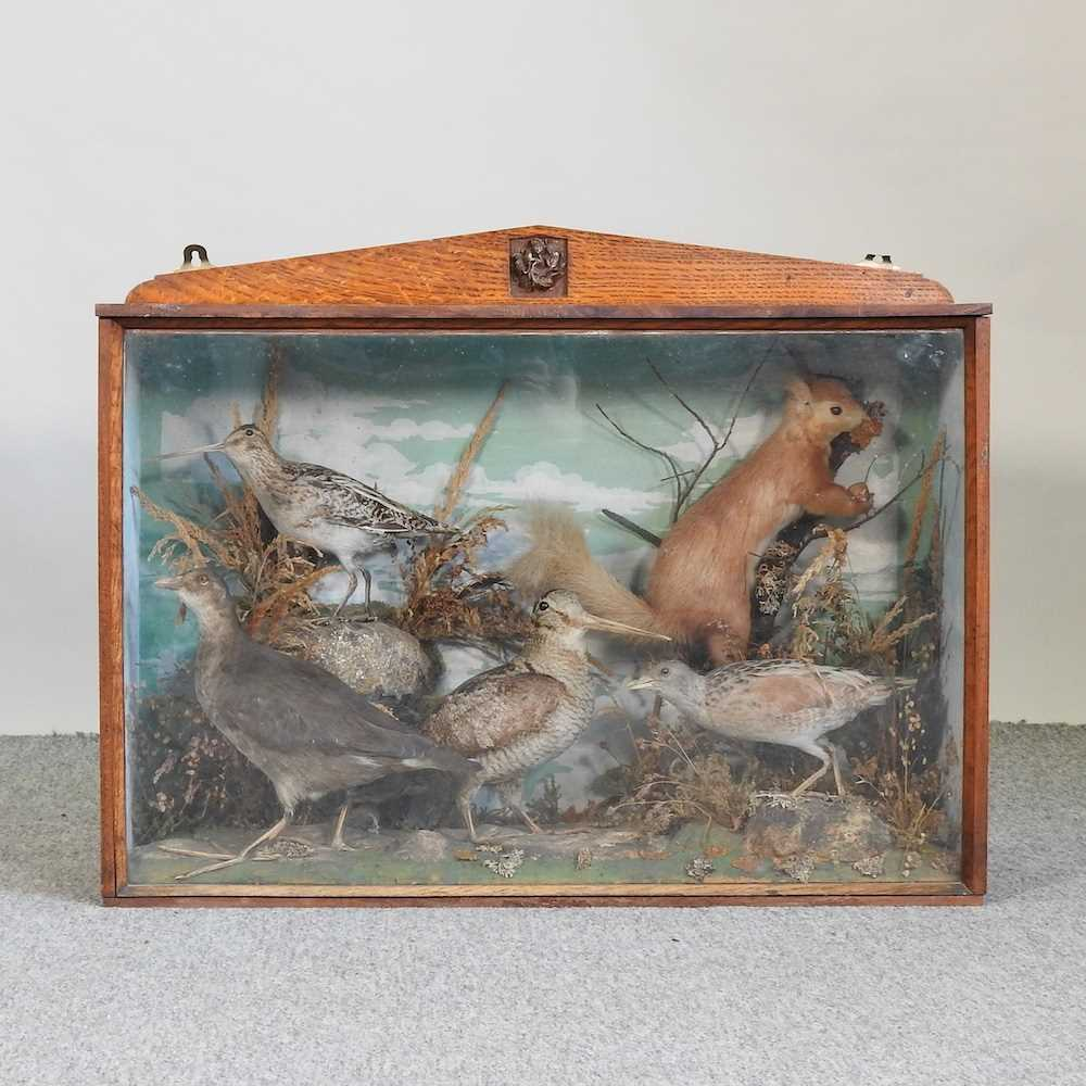 A Victorian taxidermy group of birds