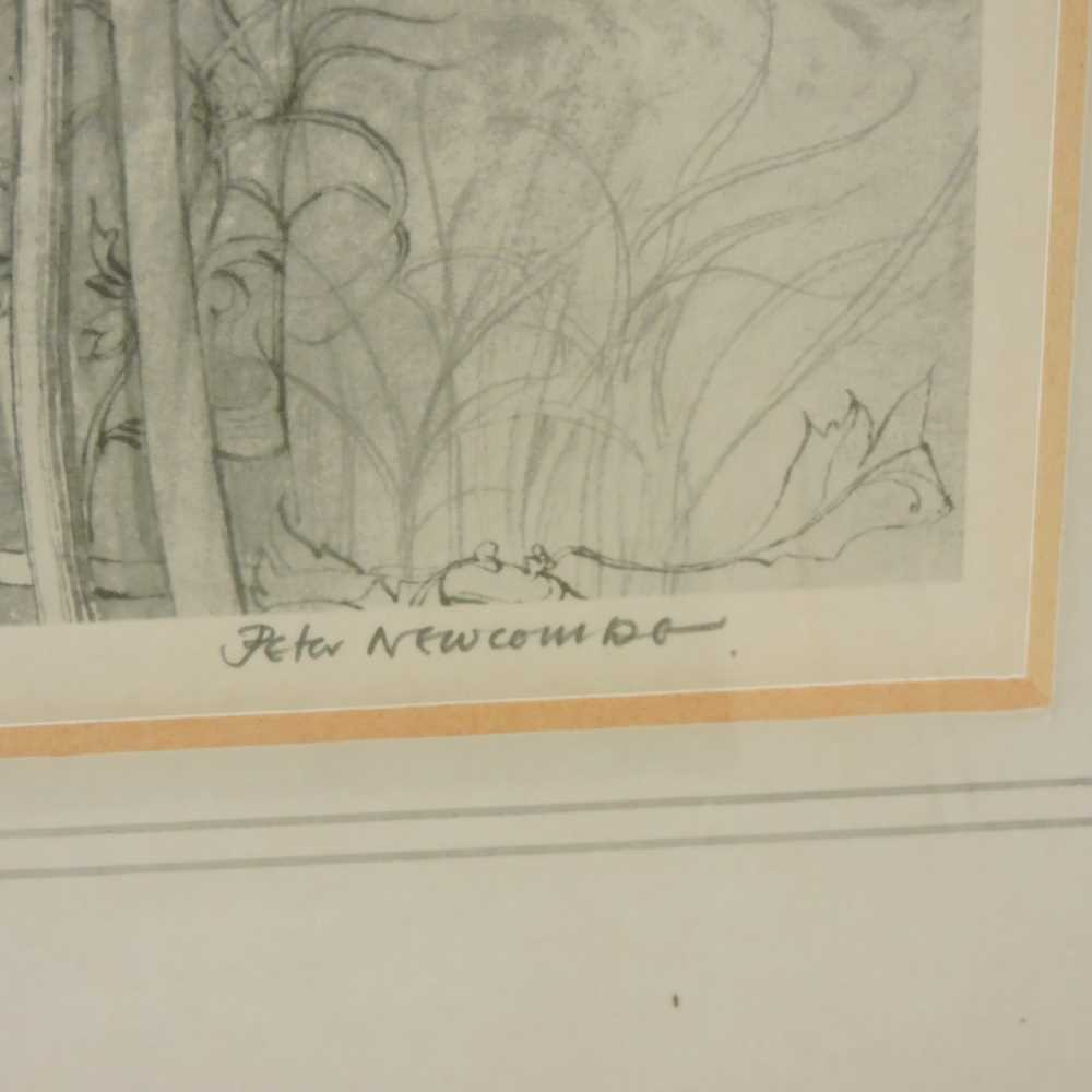 Peter Newcombe, b1943, - Image 3 of 10