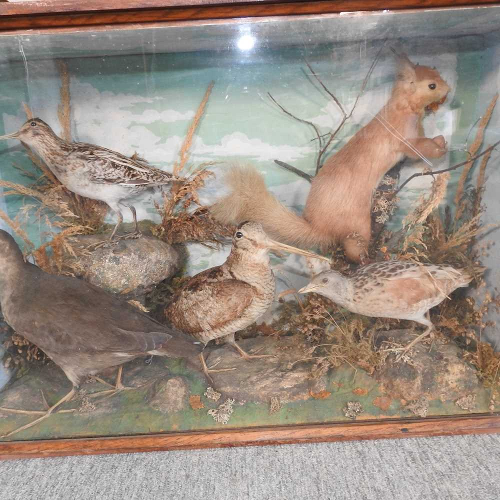 A Victorian taxidermy group of birds - Image 3 of 11