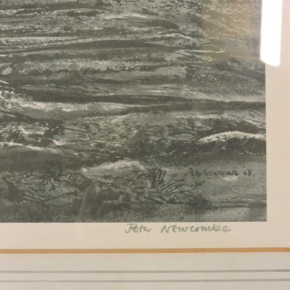 Peter Newcombe, b1943, - Image 8 of 10