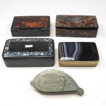 A 19th century cowrie shell snuff box
