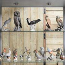 A collection of porcelain bird figures