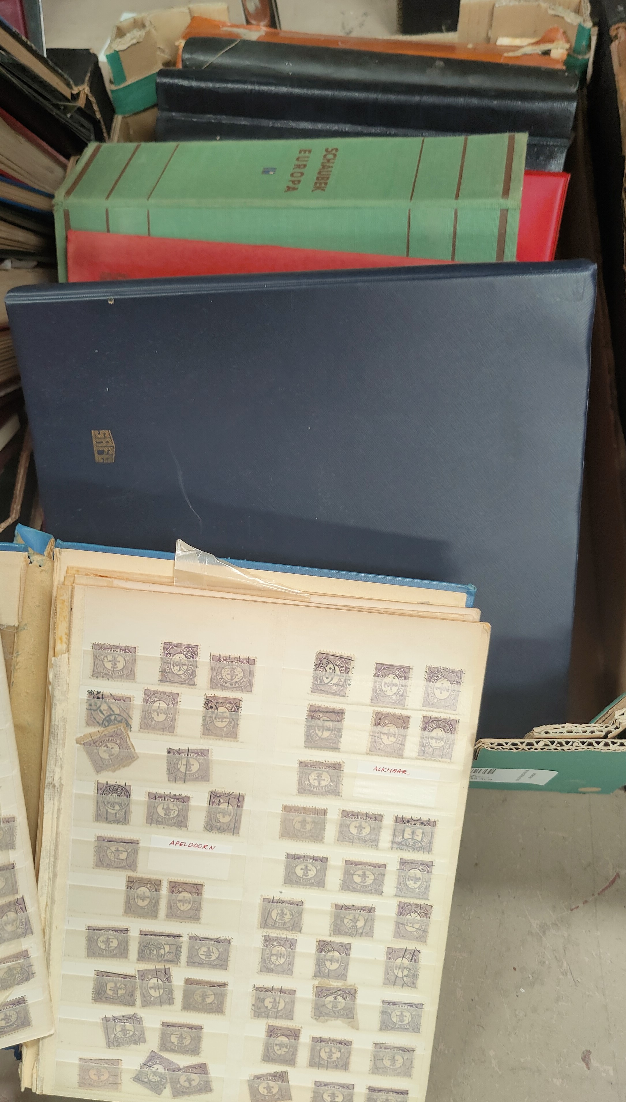 A quantity of stamps in albums and stockbooks